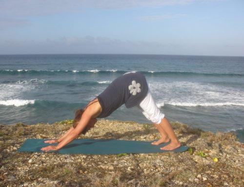 40 Tage Stress-frei-Programm