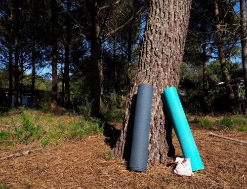Auf der Suche nach der richtigen Yoga-Matte